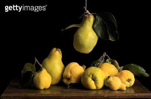 Still Life With Suspended Quince - gettyimageskorea
