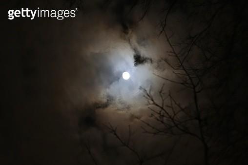 Full moon on the Halloween night - gettyimageskorea