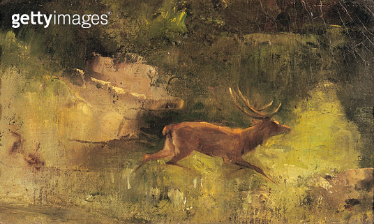 <b>Title</b> : Stag Running through a Wood, c.1865 (oil on canvas)<br><b>Medium</b> : oil on canvas<br><b>Location</b> : Musee-Maison Natale Gustave Courbet, Ornans, France<br> - gettyimageskorea