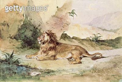<b>Title</b> : A Lion in the Desert, 1834 (w/c on paper)Additional Infoun lion dans le desert;<br><b>Medium</b> : <br><b>Location</b> : Musee de Tesse, Le Mans, France<br> - gettyimageskorea