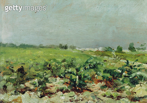 <b>Title</b> : Celeyran, View of the Vineyard, 1880 (oil on canvas)<br><b>Medium</b> : oil on canvas<br><b>Location</b> : Musee Toulouse-Lautrec, Albi, France<br> - gettyimageskorea