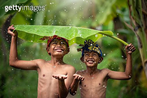 Indonesia children farmer playing rain. Asian kid smile. Indonesian concept. - gettyimageskorea