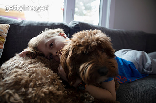 Portrait affectionate boy cuddling cute dog on living room sofa - gettyimageskorea