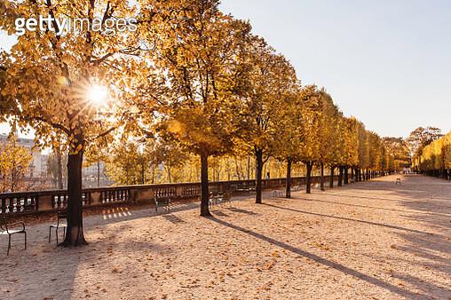 Autumn colors in Jardin des Tuileries park, Paris, France - gettyimageskorea