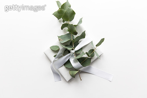 Gift box wrapped with a silver ribbon and decorated with eucalyptus - gettyimageskorea