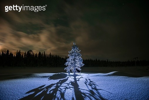 Lapland scenery at night under the stars in the frozen winter landscape, Finland - gettyimageskorea