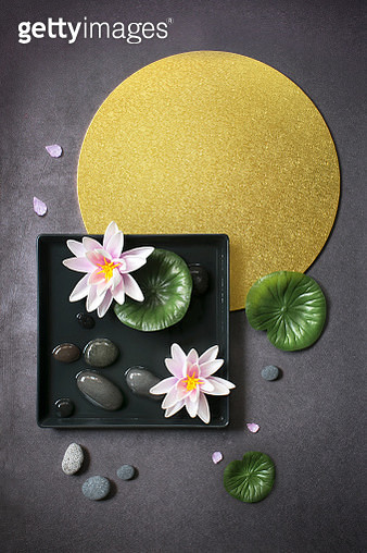 Abstract waterlily lotus flowers on geometric background still life. - gettyimageskorea