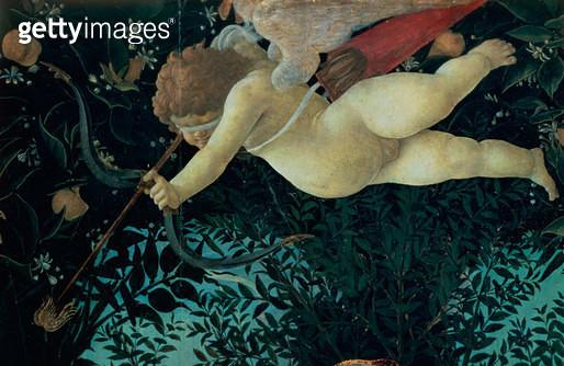 <b>Title</b> : Detail of Cupid, from the Primavera (tempera on panel) (detail of 558)<br><b>Medium</b> : <br><b>Location</b> : Galleria degli Uffizi, Florence, Italy<br> - gettyimageskorea