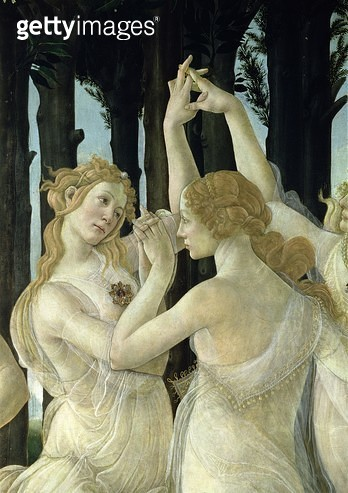 <b>Title</b> : Detail of two of the Three Graces, from the Primavera (tempera on panel) (detail of 558)<br><b>Medium</b> : <br><b>Location</b> : Galleria degli Uffizi, Florence, Italy<br> - gettyimageskorea