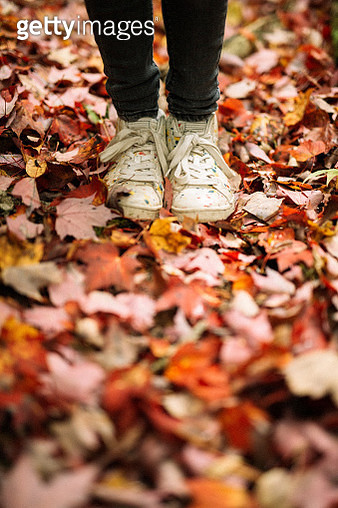 Child walking in fall leaves - gettyimageskorea