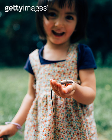 Toddle girl holding a lizard in nature - gettyimageskorea