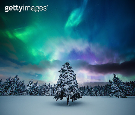Winter Landscape With Northern Lights - gettyimageskorea