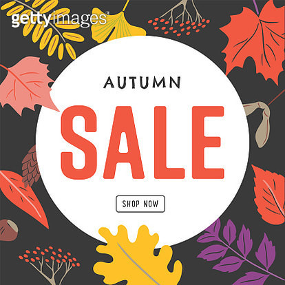 Sale design template with hand-drawn vector autumn leaf graphics - gettyimageskorea
