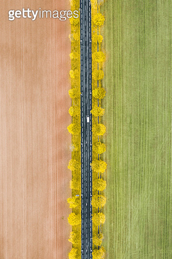 Rural autumn scene photographed from above, France - gettyimageskorea