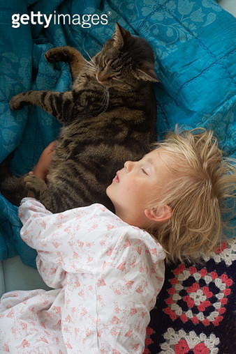 Girl sleeping with cat - gettyimageskorea