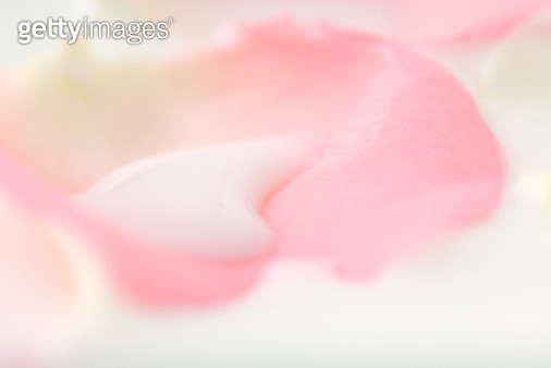 White liquid on flower petal, extreme close-up - gettyimageskorea