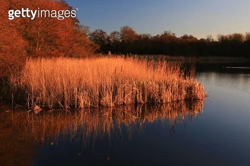 Landscape Reflections - gettyimageskorea