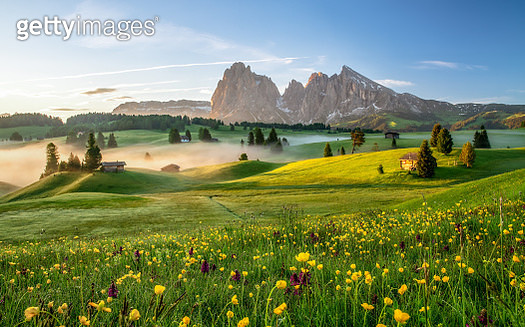 Spring on Alpe di Siusi with a view to Langkofel group - gettyimageskorea