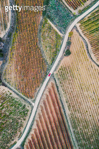 Red car on a country road surrounded by Spanish vineyards, Spain - gettyimageskorea