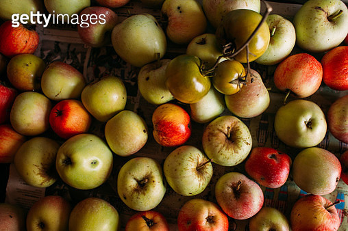 ugly natural apples and green tomatoes - gettyimageskorea