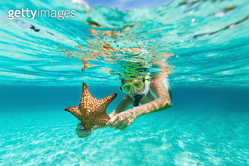 woman with snorkel and mask holding a starfish - gettyimageskorea