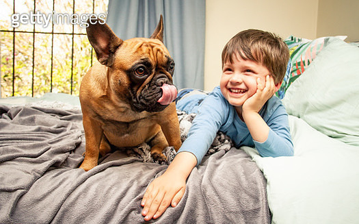 A young boy and his dog lying on their bed together - gettyimageskorea