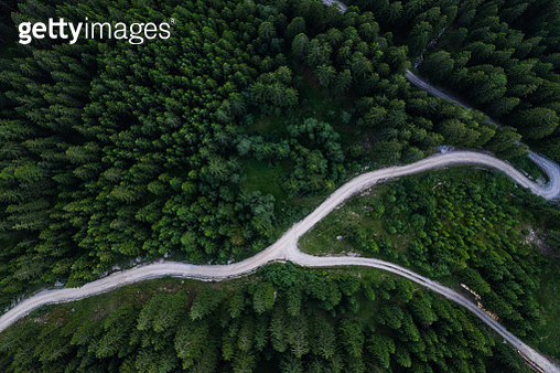 Aerial view of green forest and winding path. Drone view. Directly above. - gettyimageskorea