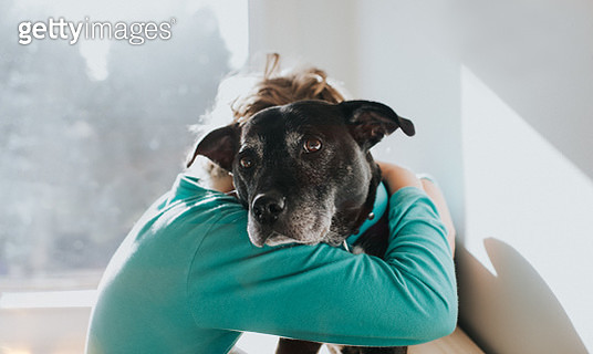 A boy and his dog in a loving embrace. - gettyimageskorea
