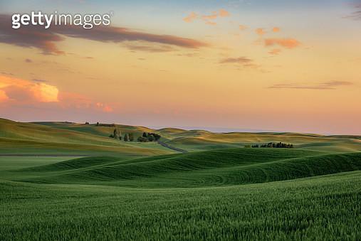 Sunset over wheat fields near Palouse, Eastern Washington State - gettyimageskorea