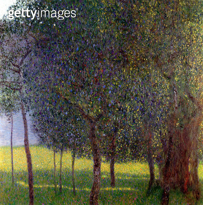 <b>Title</b> : Fruit Trees, 1901 (oil on canvas)<br><b>Medium</b> : oil on canvas<br><b>Location</b> : Private Collection<br> - gettyimageskorea