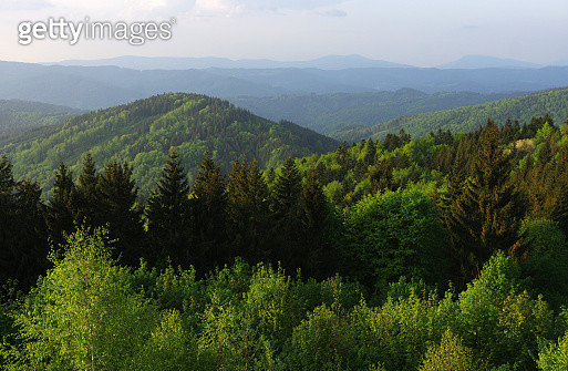 Mountain ridges of Javorníky during a sunny spring day - gettyimageskorea