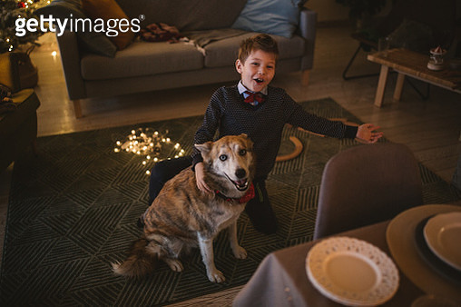 Playing with dog - gettyimageskorea