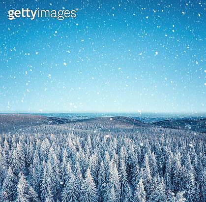 Idyllic Winter Day - gettyimageskorea