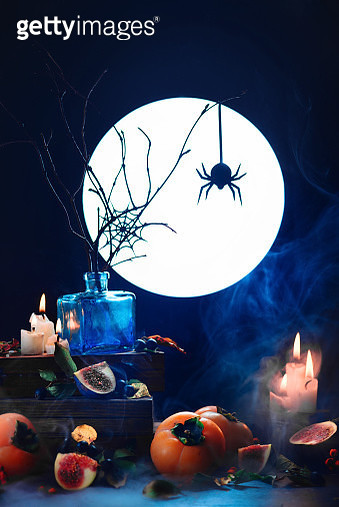 Among dust and candles (Spider Still Life) - gettyimageskorea