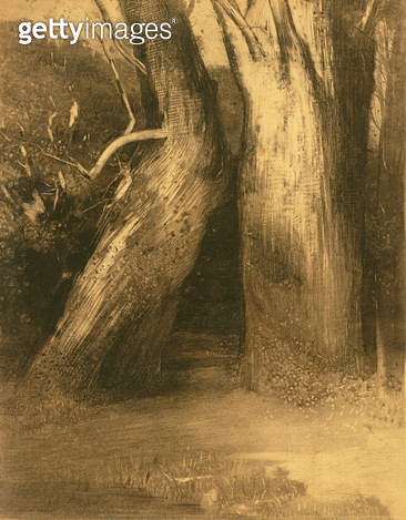 <b>Title</b> : Two Trees, c.1875 (charcoal on paper)<br><b>Medium</b> : charcoal on paper<br><b>Location</b> : On Loan to the Hamburg Kunsthalle, Hamburg, Germany<br> - gettyimageskorea