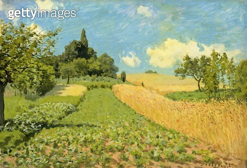 <b>Title</b> : The Cornfield (near Argenteuil) (oil on canvas)<br><b>Medium</b> : oil on canvas<br><b>Location</b> : Hamburger Kunsthalle, Hamburg, Germany<br> - gettyimageskorea