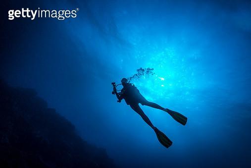 Female Diver - Palau, Micronesia - gettyimageskorea