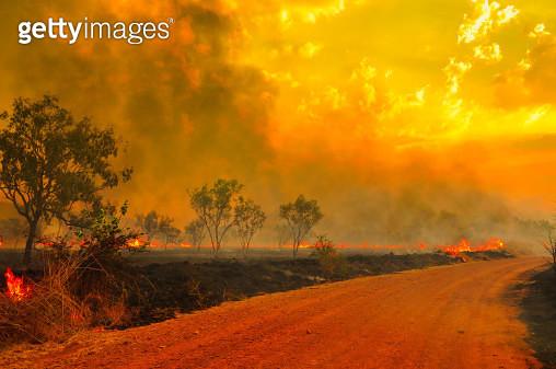 Australian bush fires - gettyimageskorea