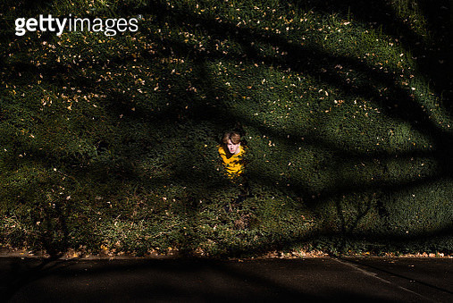 Young Man In Plants - gettyimageskorea