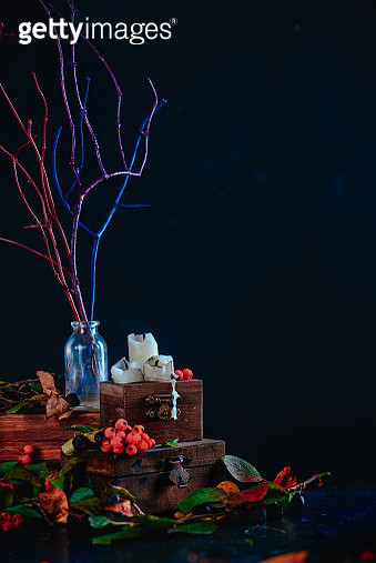 Tree branches in a glass bottle on a stack of wooden boxes, dark still life with a halloween mood... - gettyimageskorea