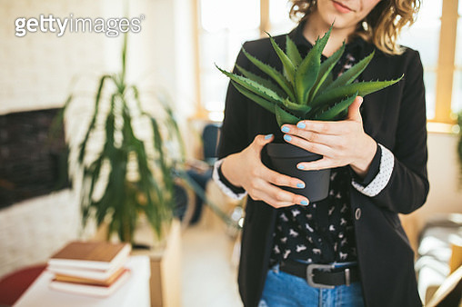 Unrecognizable Woman holding an Aloe Vera plant - gettyimageskorea