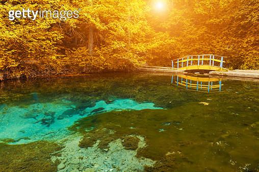 Bridge reflecting in still pond in japanese garden - gettyimageskorea