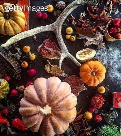 Directly Above Shot Pumpkins And Fruits On Table - gettyimageskorea