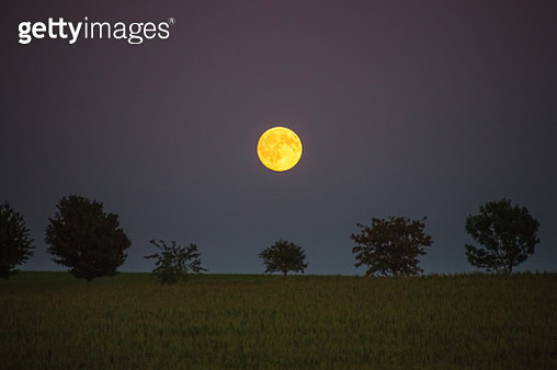 Scenic View Of Field Against Sky At Night - gettyimageskorea