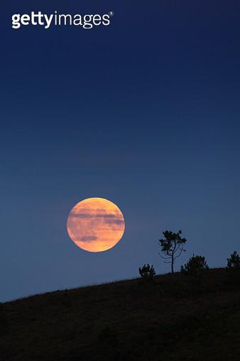 Lever de la pleine lune en Bretagne - Monts d'Arrée - gettyimageskorea