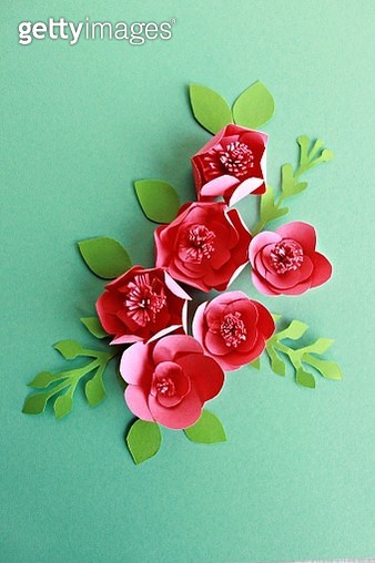 pink paper  flowers on the green background - gettyimageskorea