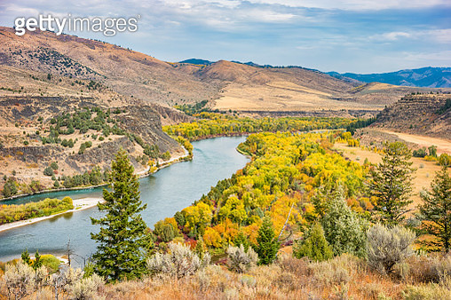 Stock photograph of the Snake River near Swan Valley Idaho USA on an autumn day. - gettyimageskorea