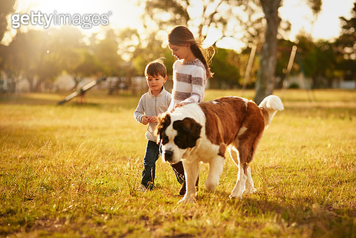 Looking for adventure together - gettyimageskorea