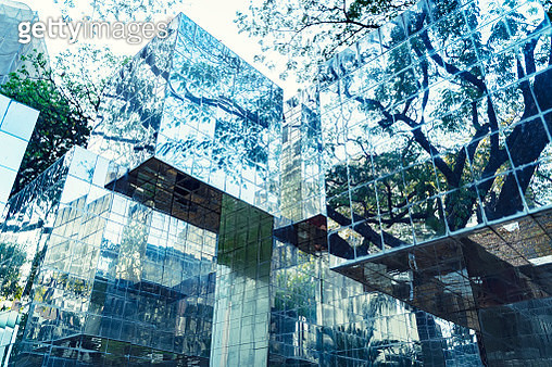 Reflection of trees on glass. Abstract background. - gettyimageskorea