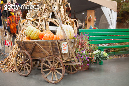 Wagon Full of Pumpkins For Sale - gettyimageskorea